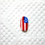 Obama and Romney Nail Art! (2/18)