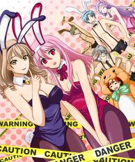 Bunny Year