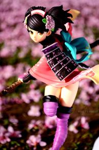 Field of sakura