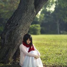 Mikasa Ackerman : A warm place to return to