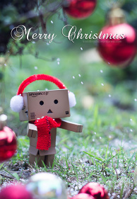 Danboard  Season's Greetings