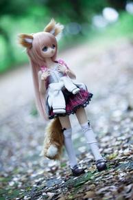Lost Kitsune