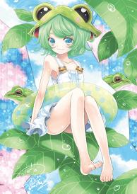 Tree Frog-chan