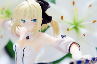 Saber and Lily