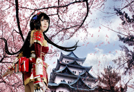 Naotora Ii ( Samurai Warriors 4 )
