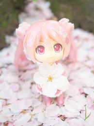 Sakura Miku: Bloomed in Japan