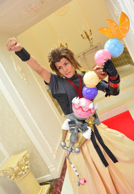 Kingdom Hearts Birth by Sleep Terra