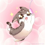 Moar Cats