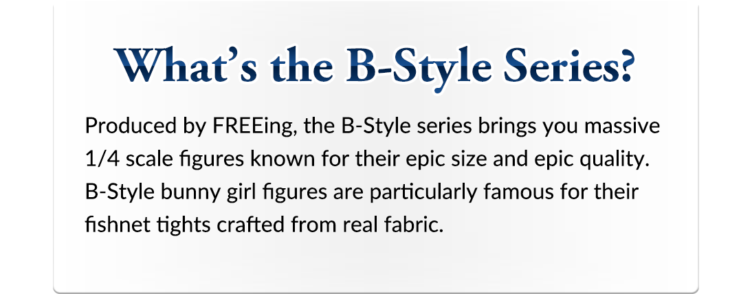 What's the B-Style Series?