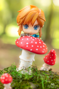 Link and the mushroom