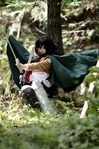 | Mikasa Ackerman / Attack on Titan